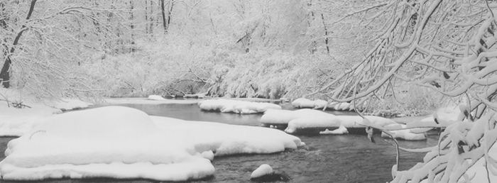 Frozen River Banner